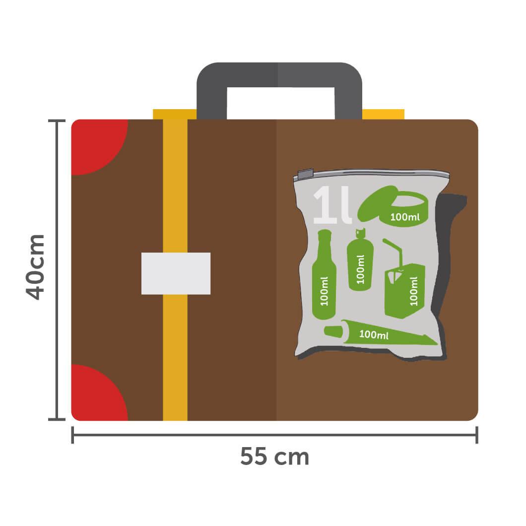 Handgepäckstücke