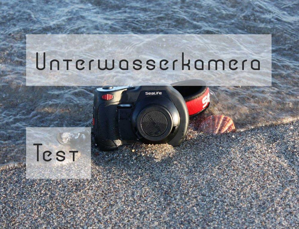 Die besten digitalen Kompaktkameras für die Unterwasserfotografie